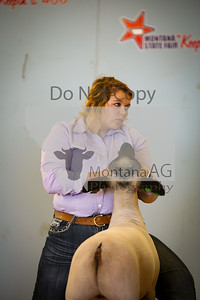 montanaag-9