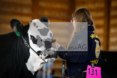 montanaag-263