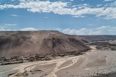 Arica