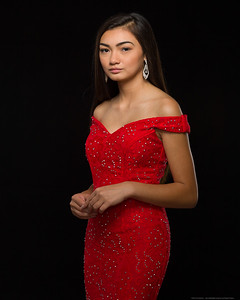 Red Fashion 1-1