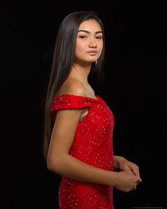 Red Fashion 1-17