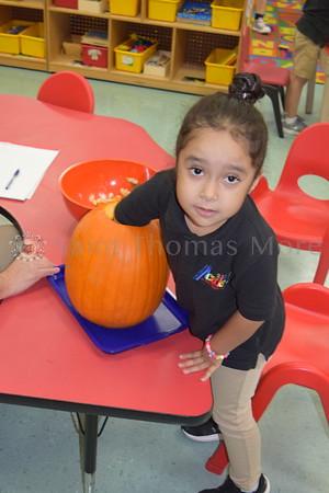 Academy Pumpkin Patch