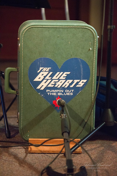 the blue hearts-9685