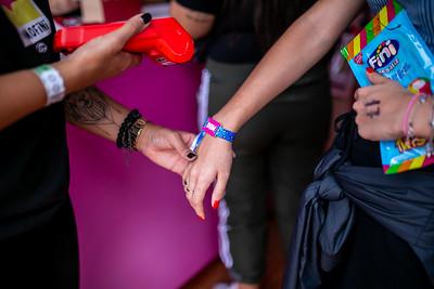 LollaPalooza 2019 - Day 3