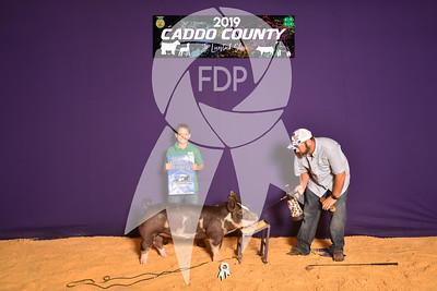 DO19-Caddo-4732