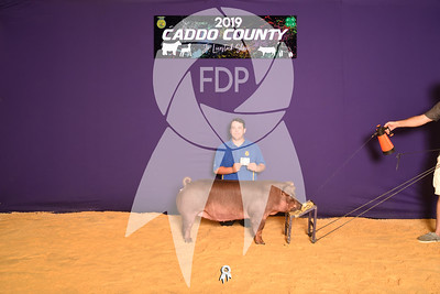 DO19-Caddo-4751