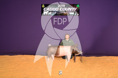 DO19-Caddo-4766