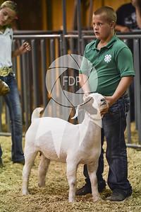EF19-Caddo-2337