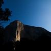 Morning sun lights up El Cap, seen from the meadows far below.