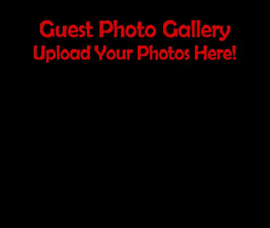 camera phone image fw