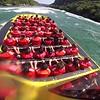 back rapids