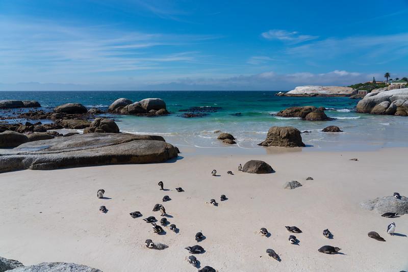 Cape Town Mission-8