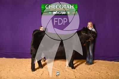 DO19-Checlocal-7752