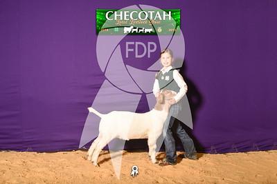 DO19-Checlocal-7690