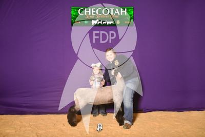 DO19-Checlocal-7680