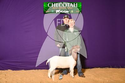 DO19-Checlocal-7704