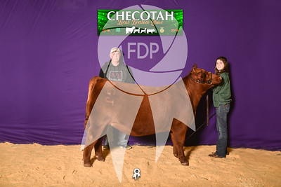 DO19-Checlocal-7716