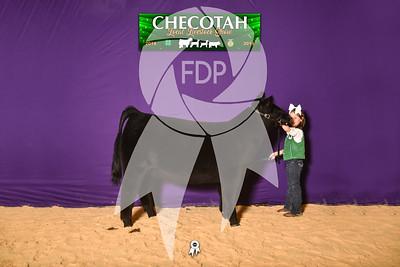 DO19-Checlocal-7750