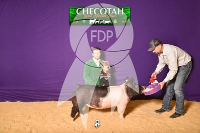 DO19-Checlocal-7757