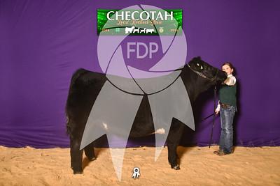 DO19-Checlocal-7687