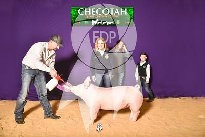 DO19-Checlocal-7755
