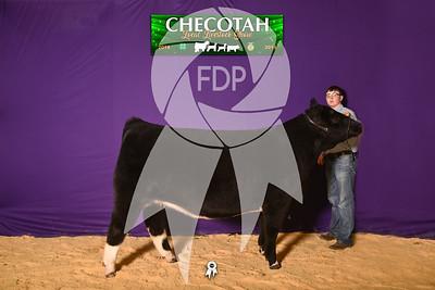 DO19-Checlocal-7725