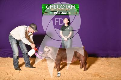 DO19-Checlocal-7735