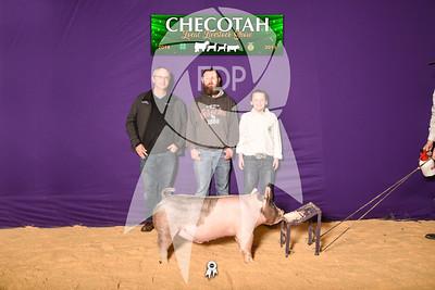 DO19-Checlocal-7745