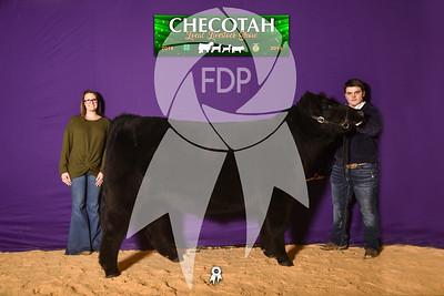 DO19-Checlocal-7710