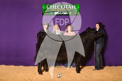 DO19-Checlocal-7733