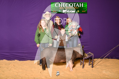 DO19-Checlocal-7707