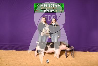 DO19-Checlocal-7746