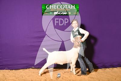 DO19-Checlocal-7689