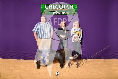 DO19-Checlocal-7742