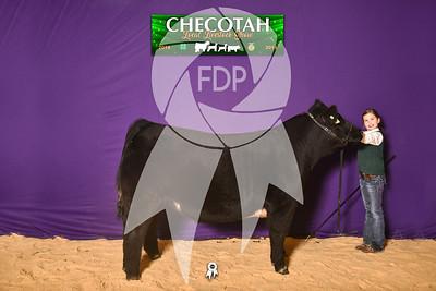 DO19-Checlocal-7685