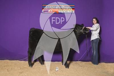 JD19-CDM_0603