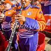 clemson-tiger-band-lou-2019-9