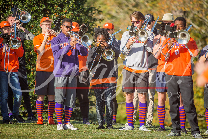 clemson-tiger-band-wofford-2019-9