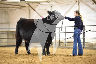 EW19-Custer-4226
