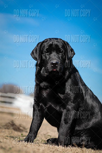 WOODY-9months-019