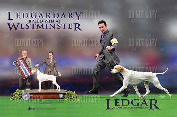Ledgar(February)