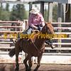 Elk2019_6574