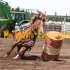 Elk2019_6865