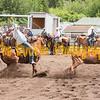 Elk2019_7282