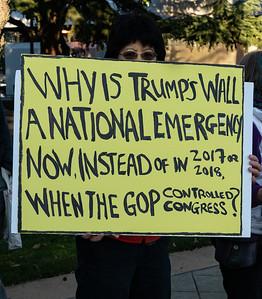 Anti-Trump Demo-8493