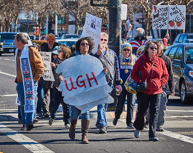 NationalEmergencyProtest_SJ_ChrisCassell_CRC0963