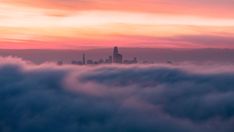 Follow the Pink Fog Road