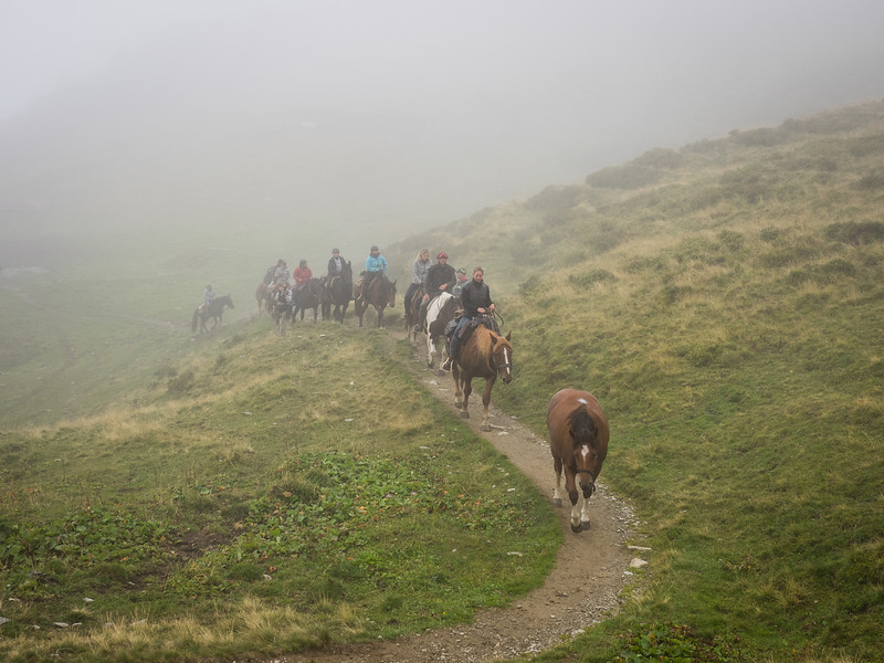 9/6 - Equestrians in the mist