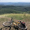 Biked it.  See the Duna along top of foto, looking east.