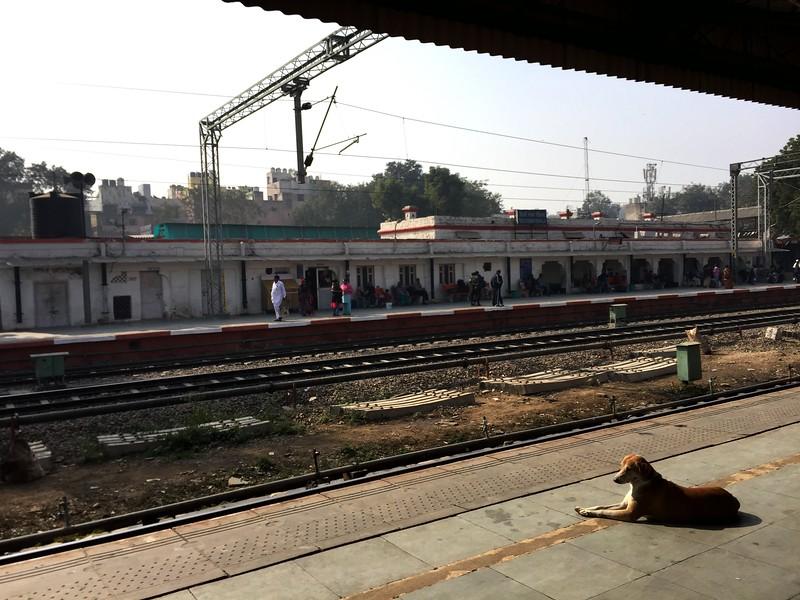<b>Delhi Sarai Rohilla</b> <br>Delhi, India <br>January 1, 2019